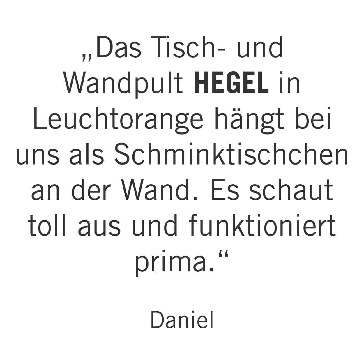 TISCH- UND WANDPULT HEGEL