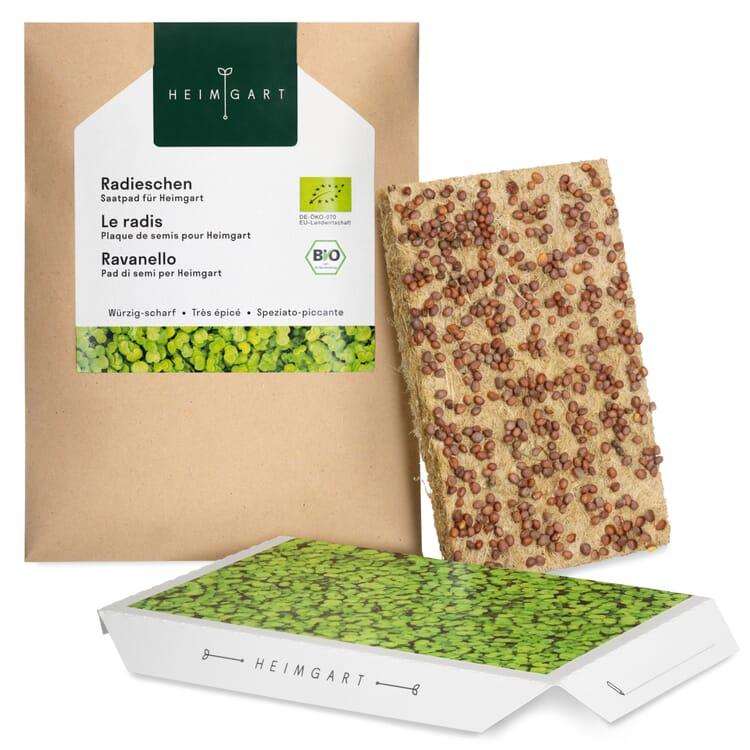 Microgreens-Saatpad, Radieschen