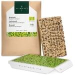 Microgreens-Saatpad Brokkoli
