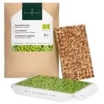 Microgreens-Saatpad Gartenkresse