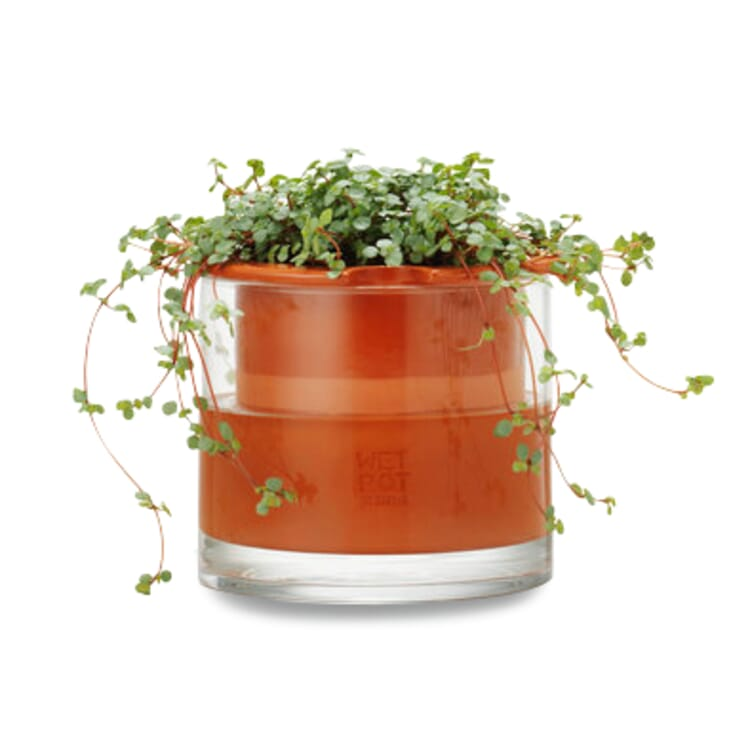 Pflanzgefäß Wet Pot Systems, Ø 15 cm